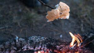 Dekorativ bild av grillning
